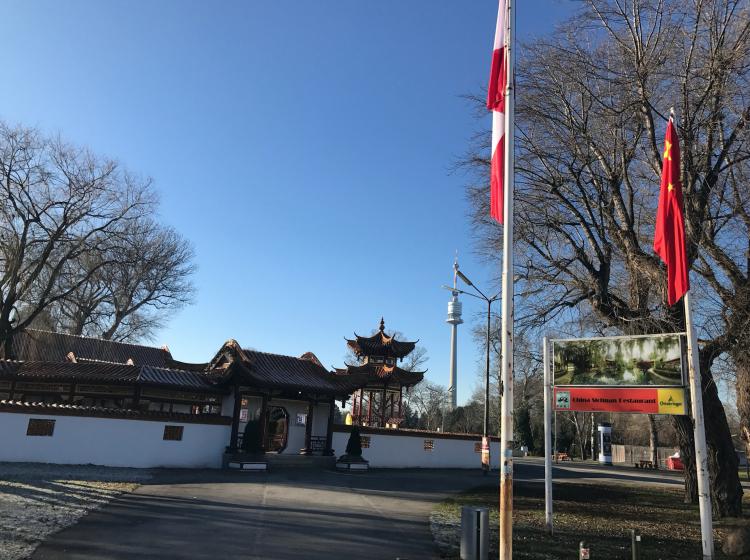 Der Chinese beim Donaupark